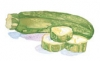 Courgette (Seed)