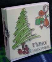 A Gift of Seed - Box X35 , Christmas  Seed GiftBox