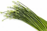 Chives Plant , Garlic Chives (White Flowered - Herb)
