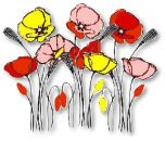 Flowers , Poppy - The 'James Collection' (OFFER)