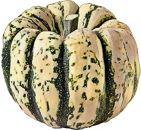 Squash , Sweet Dumpling (Small Bush)